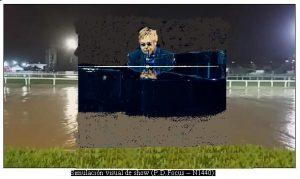 Cancelaciòn Show Elton John en Argentina (Foto Paul David Focus - Abril 2017 A004)
