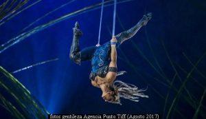 Amaluna - Cirque Du Soleil (Foto Gentileza Agencia Punto Tiff A008)