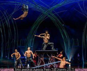 Amaluna - Cirque Du Soleil (Foto Gentileza Agencia Punto Tiff A009)