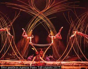 Amaluna - Cirque Du Soleil (Foto Gentileza Agencia Punto Tiff A010)