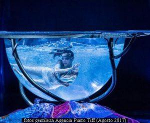 Amaluna - Cirque Du Soleil (Foto Gentileza Agencia Punto Tiff A011)