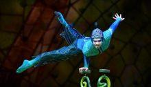 Cirque Du Soleil (OVO - Argentina - Foto Agencia Punto Tiff A000)