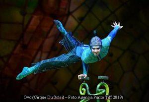 Cirque Du Soleil (OVO - Argentina - Foto Agencia Punto Tiff A001)