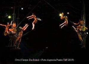 Cirque Du Soleil (OVO - Argentina - Foto Agencia Punto Tiff A004)