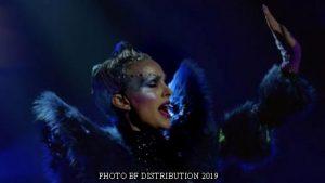Vox Lux (Photo BD Distribution - April 2019 - A008)